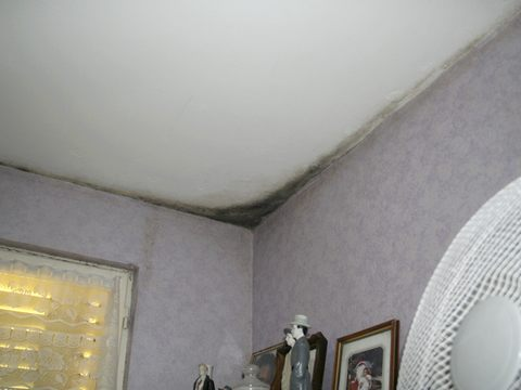 identifiez votre probl me d 39 humidit avec tecnisec. Black Bedroom Furniture Sets. Home Design Ideas